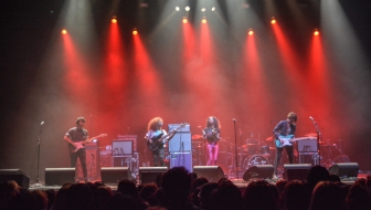 The Skins @ The Wiltern Jan. 24