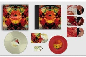 special deluxe book edition of Baby Darling Doll Face Honey