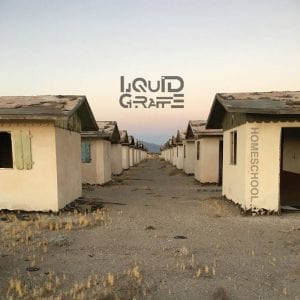 Liquid Giraffe cover art