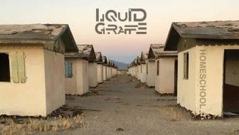 Liquid Giraffe cover art